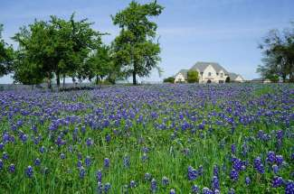 Ranches and Homes With Acreage